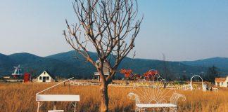 Những lưu ý khi tham quan Thuận Phước Field Đà Nẵng