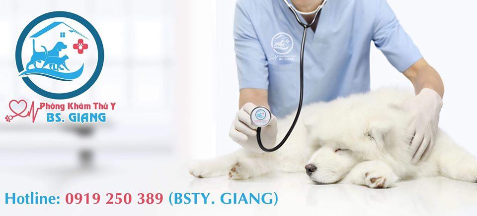 phòng khám thú y Đà Nẵng