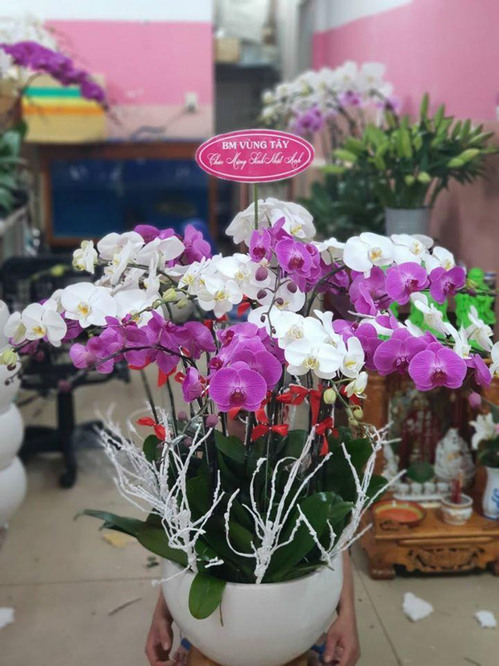 Shop Hoa Vip Đà Nẵng
