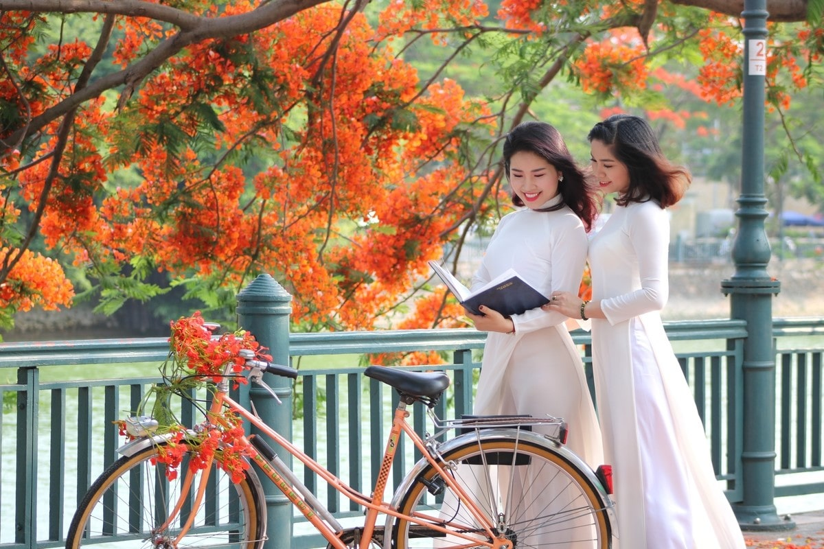 du lịch từ Đà Nẵng đến Hải Phòng